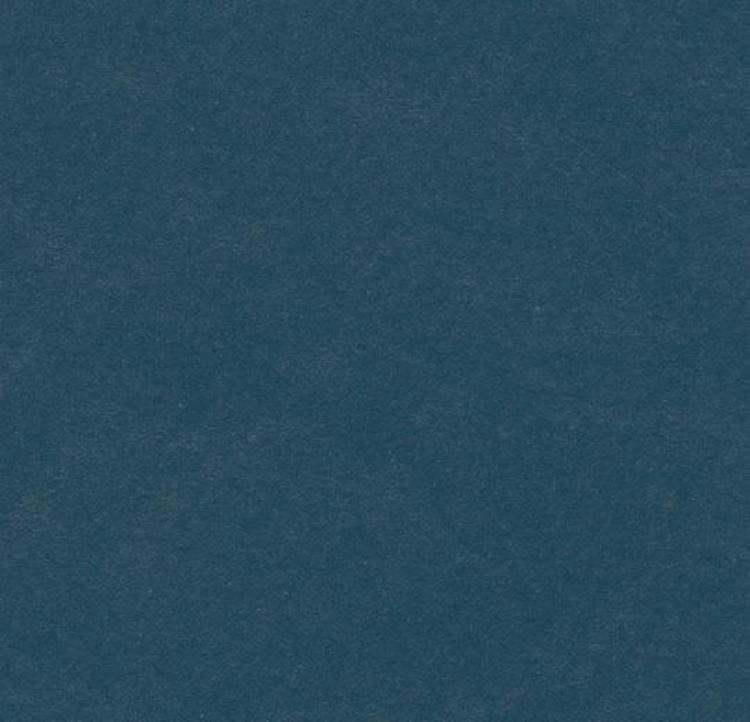 Pilt Näidis Marmoleum Walton 2.5 petrol 3358