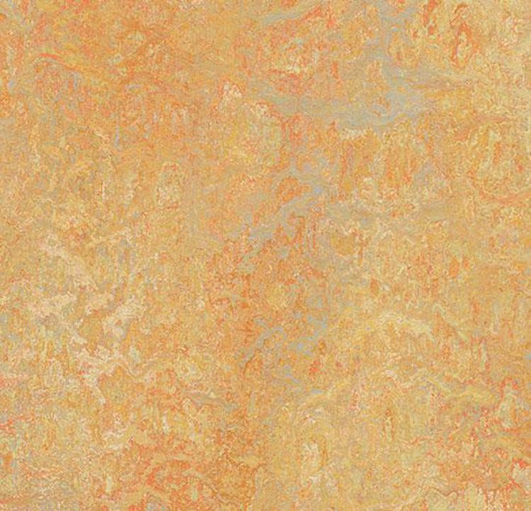 Pilt Marmoleum  Vivace 2.5  sunny day 3411