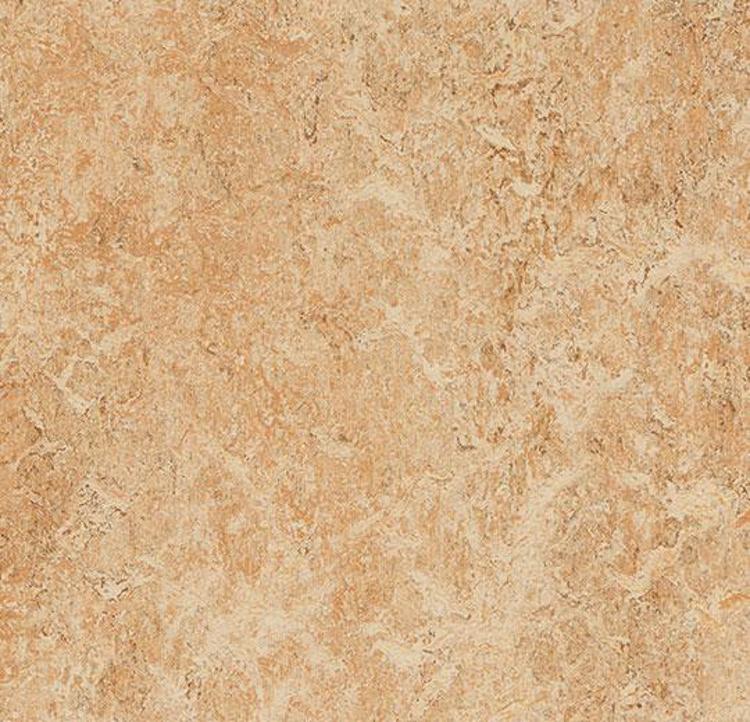 Pilt Marmoleum Real 2.0 shell 3075 (A)