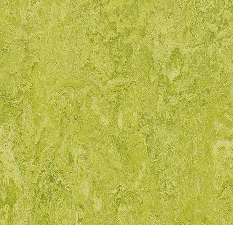 Pilt Näidis Marmoleum Real 2.5 chartreuse 3224 (A)