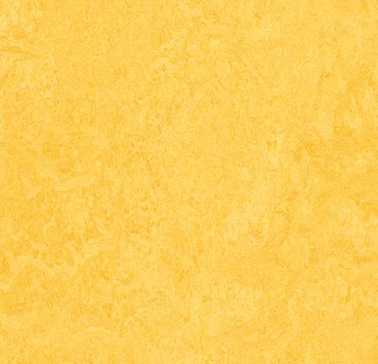 Pilt Marmoleum Fresco 2.5 lemon zest 3251