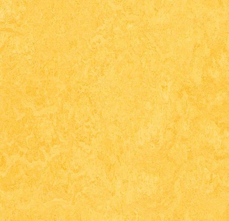 Pilt Näidis Marmoleum Fresco 2.5 lemon zest 3251