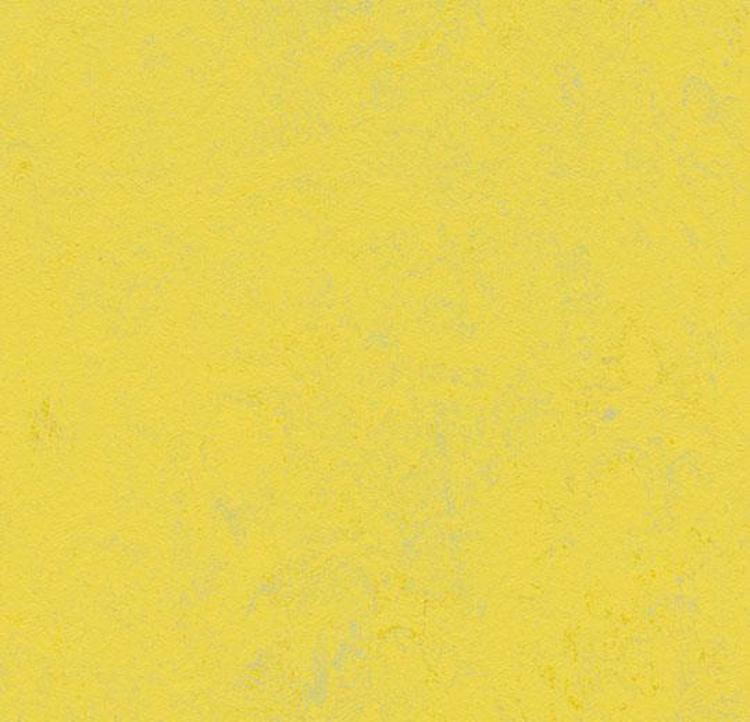 Pilt Marmoleum Concrete 2.5  yellow glow 3741