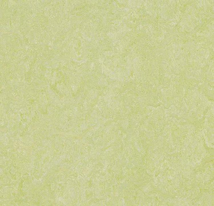 Pilt Näidis Marmoleum Real 2.0 green wellness 3881