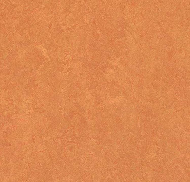 Pilt Marmoleum Fresco 2.5 African desert 3825