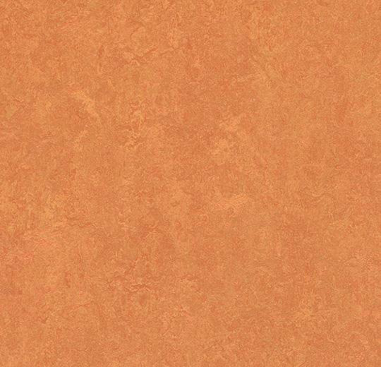 Pilt Näidis Marmoleum Fresco 2.5 African desert 3825