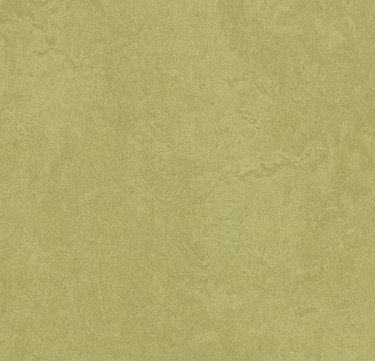 Pilt Marmoleum Fresco 2.5 avocado 3265