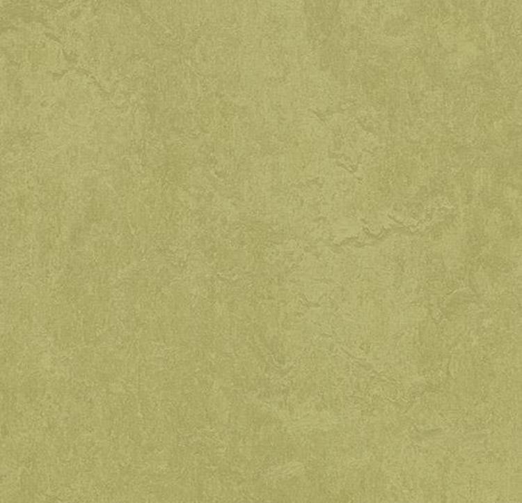 Pilt Näidis Marmoleum Fresco 2.5 avocado 3265