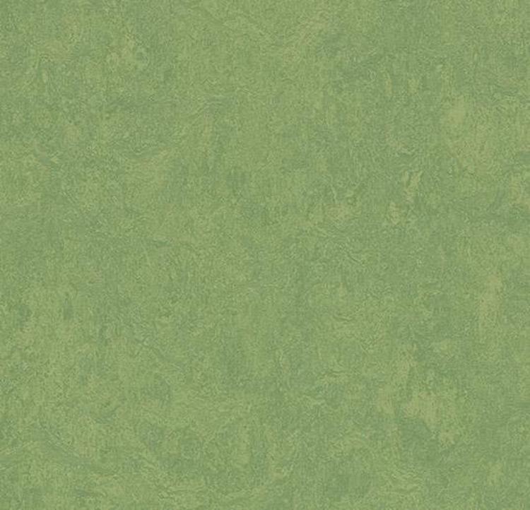 Pilt Näidis Marmoleum Fresco 2.5 leaf 3260