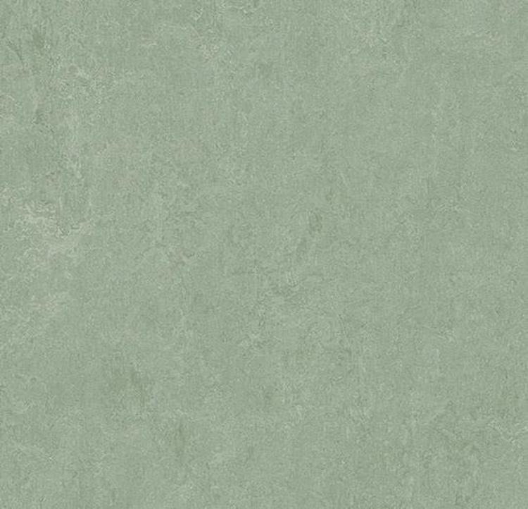 Pilt Marmoleum Fresco 2.5 sage 3891