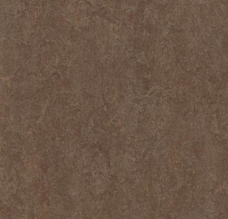 Pilt Marmoleum Fresco 2.5 walnut 3874
