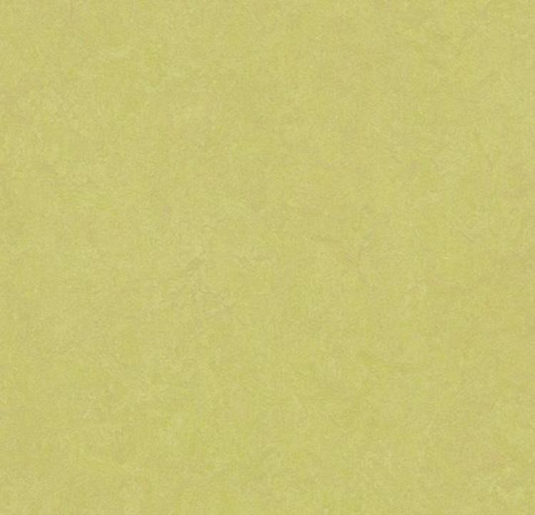 Pilt Näidis Marmoleum Fresco 2.5 spring buds 3885