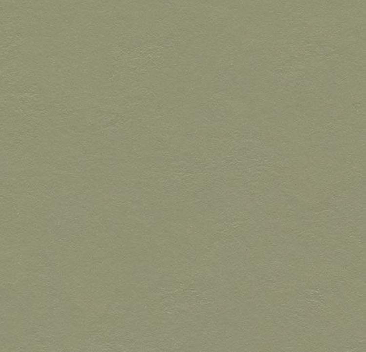 Pilt Näidis Marmoleum Walton 2.5 rosemary green 3355