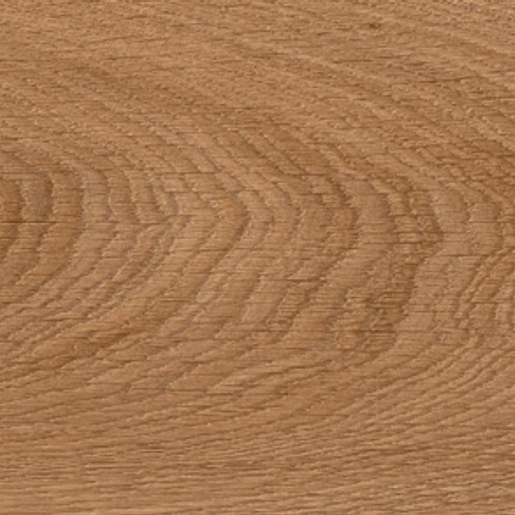 Pilt Näidis Moduleo 55 Impressive laurel oak 51822 click
