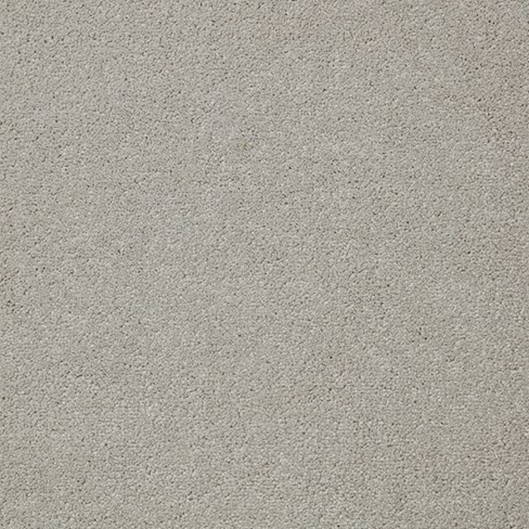 Pilt Näidis Primo Plus alloy grey