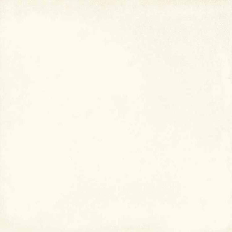 Pilt SA Vita bianco 20 x 20R luc