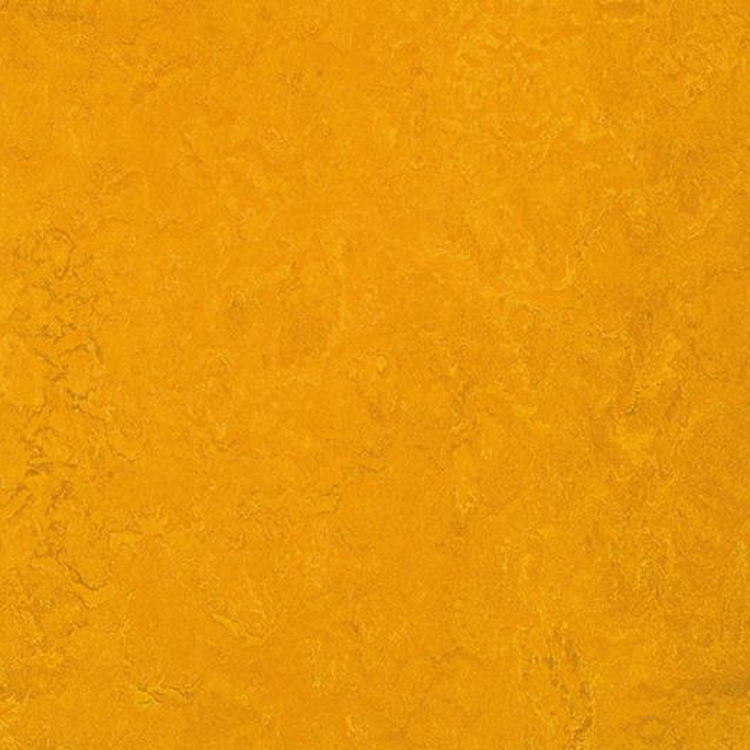 Pilt Näidis Marmoleum Fresco 2.5 golden sunset 3125