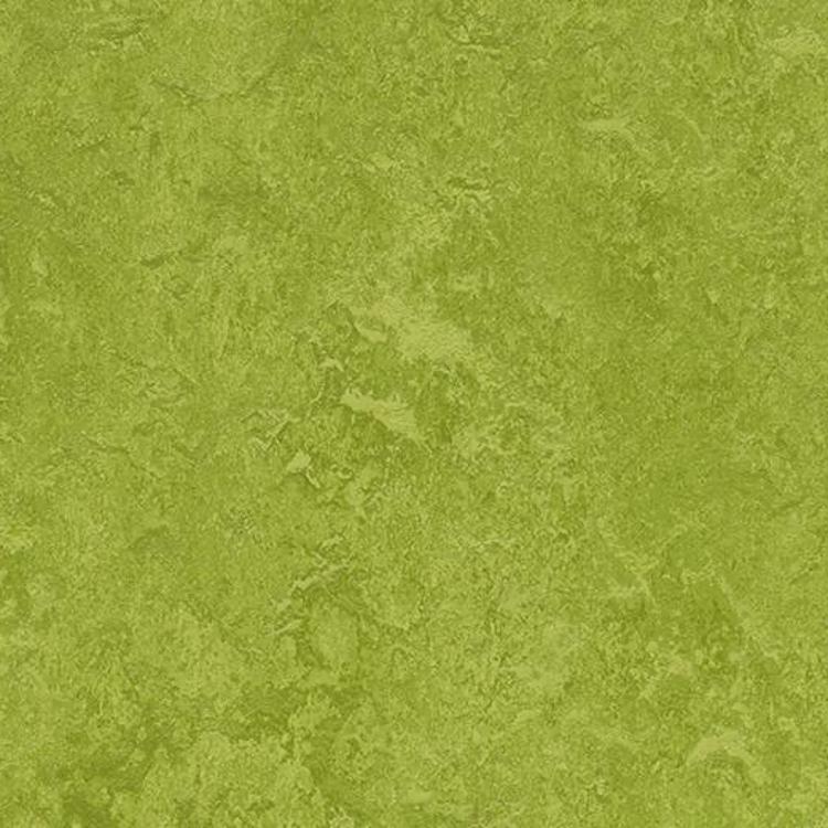 Pilt Näidis Marmoleum Fresco 2.5 green 3247