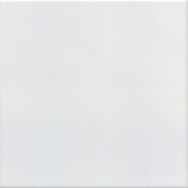 Pilt Seinaplaat white glossy 20x20