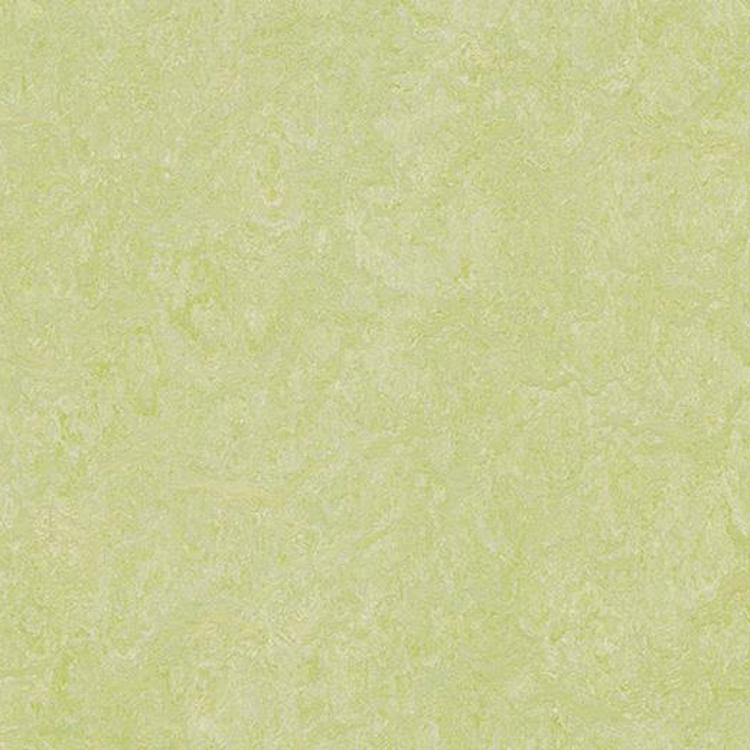 Pilt Marmoleum Real 2.0 green wellness 3881