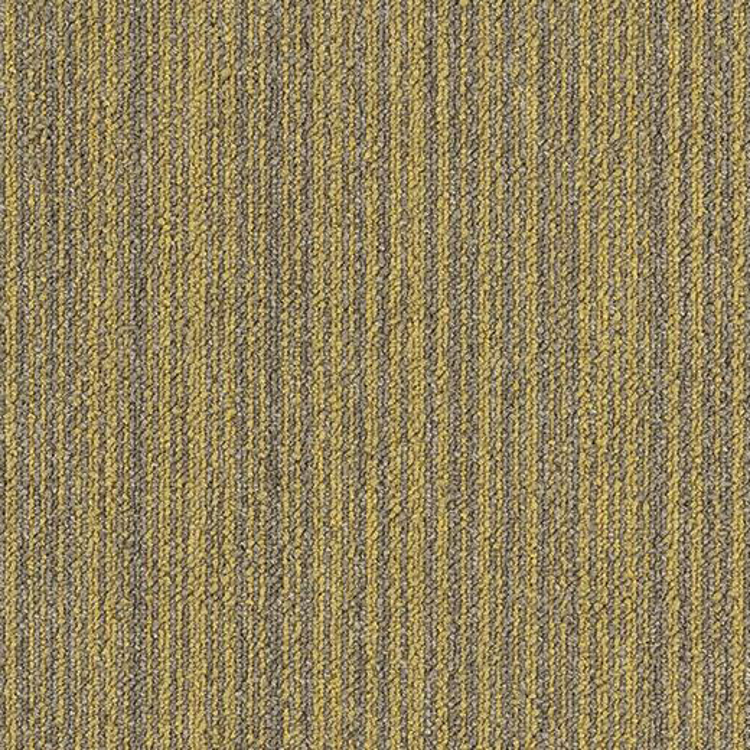 Pilt Näidis Tessera Outline 3105 macaroon