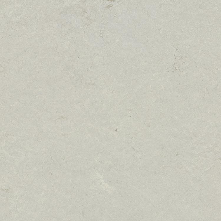 Pilt Näidis Marmoleum Modular mercury t3716
