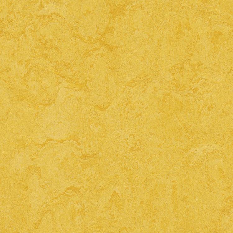Pilt Näidis Marmoleum Modular lemon zest t3251